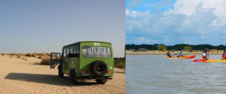 Reunión sobre el viaje a Doñana